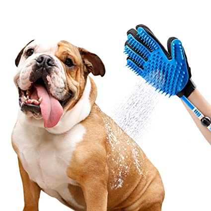 Dog grooming fort lauderdale