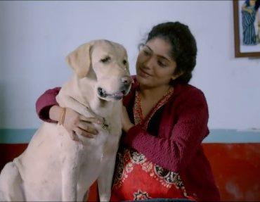 Unconditional love between man and dog: Nenu Na Nestham