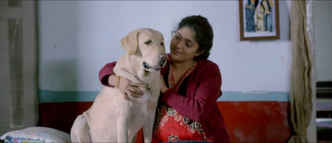 Unconditional love between man and dog: Nenu Na Nestham